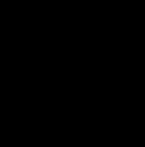 Sonnensymbol umrandet von den 12 Sternzeichen